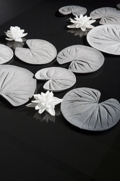 The black-and-white photograph shows water lily leaves and flowers lying on a black, slightly reflective background.